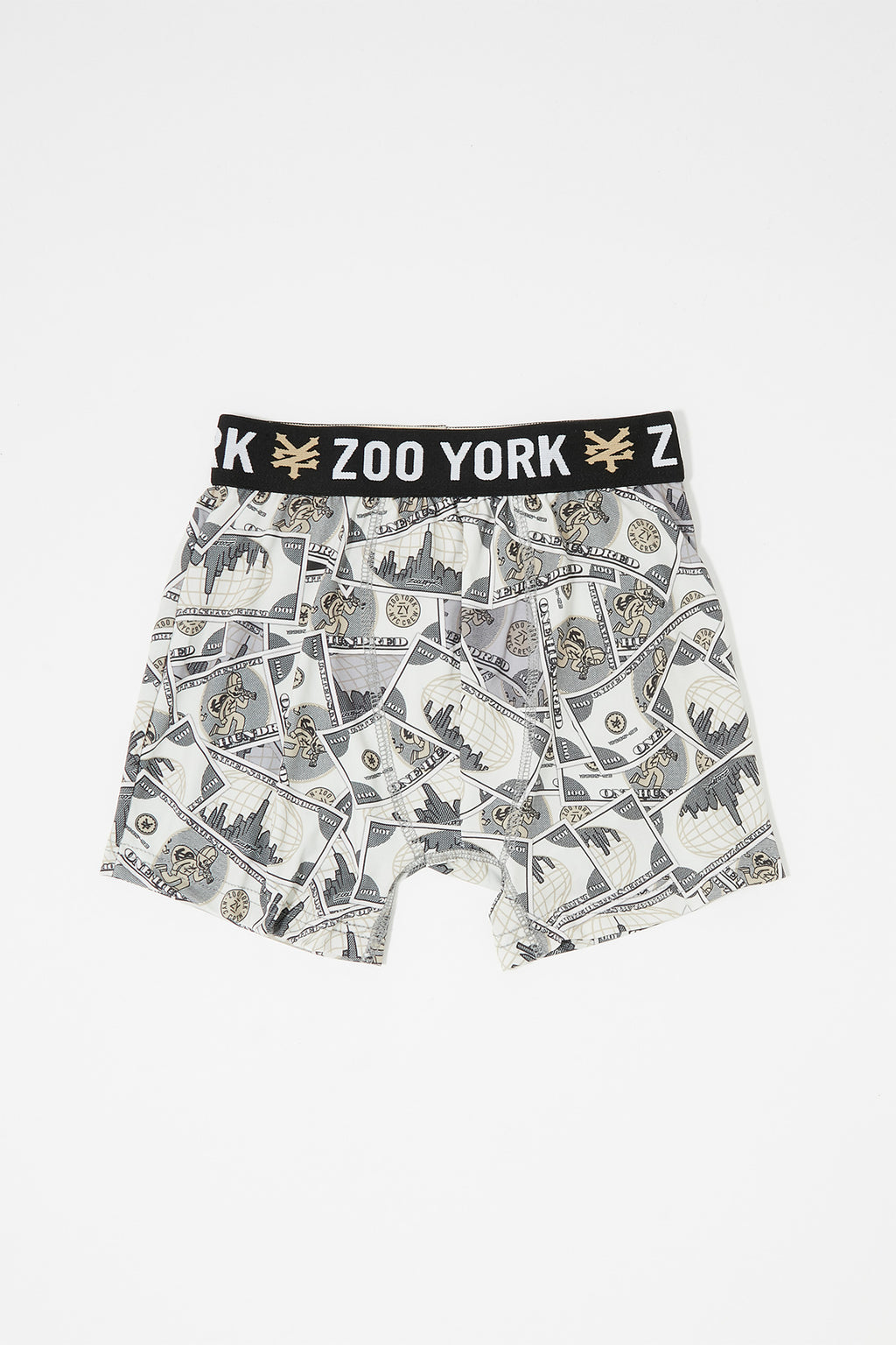Zoo York Boys Money Boxer Brief