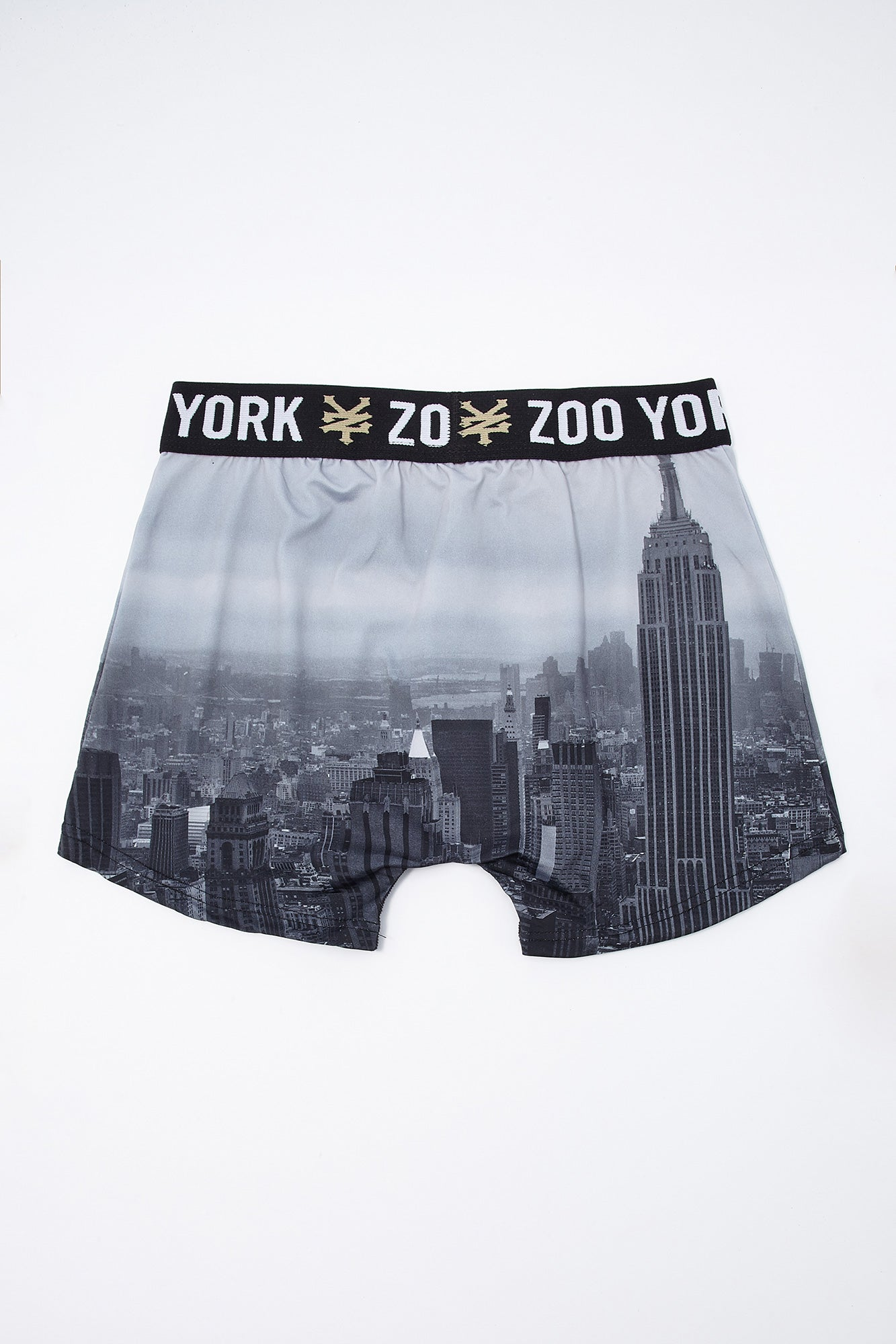 Zoo York Youth Cityscape Boxer Brief