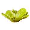 47cm x 43cm Prickly Pear Lime Green Bowl