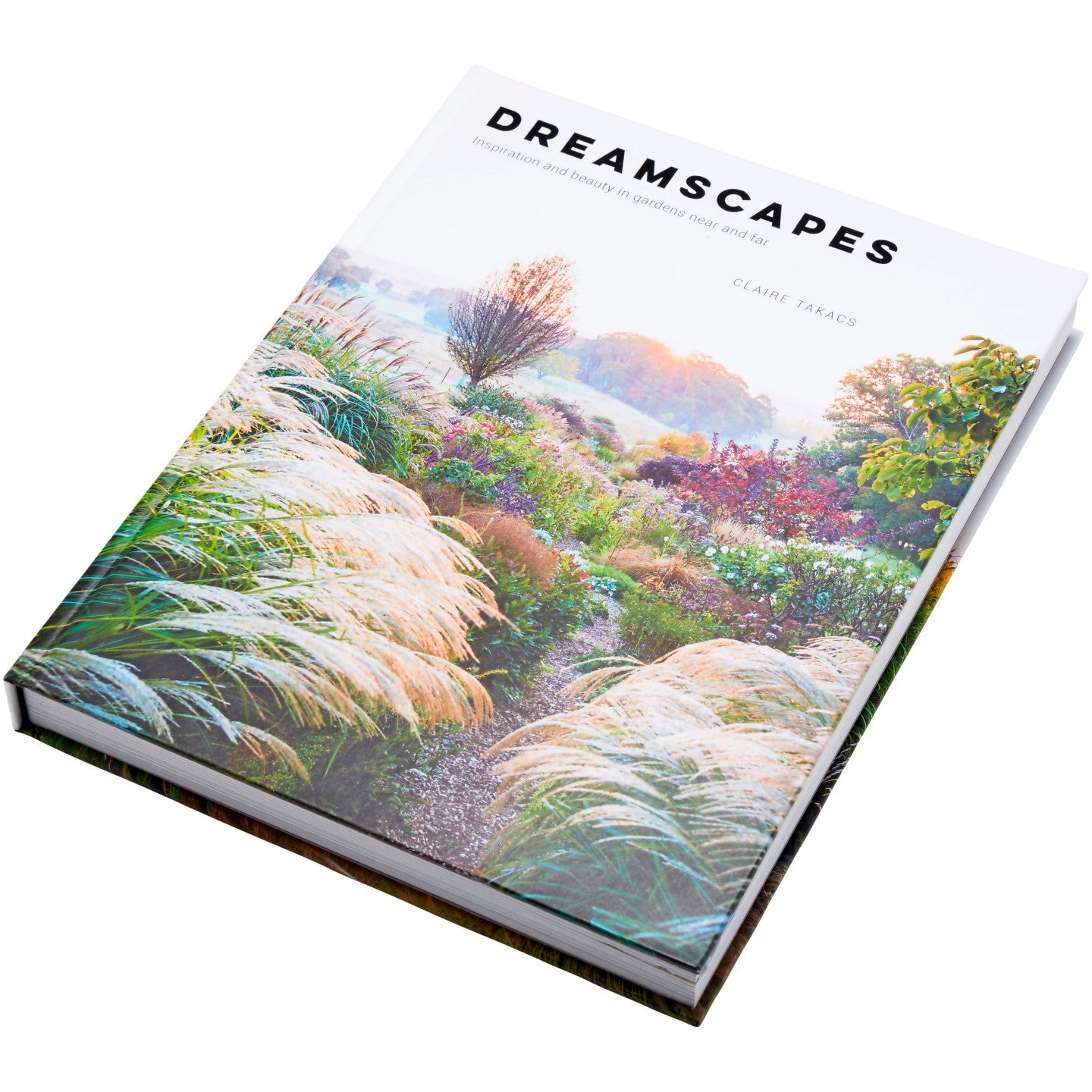 Dreamscapes