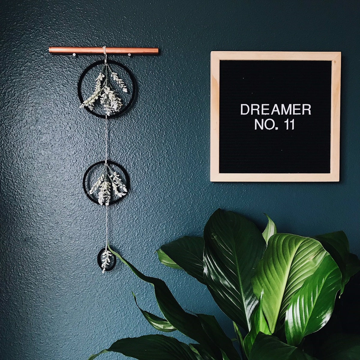 Dreamer No. 11 | 100 Days of Dreamers