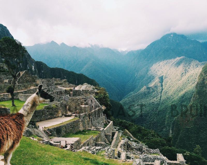 Machu Picchu Photography | Adventure Wall Art | Bast + Bruin