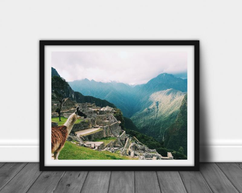 Travel Photography | Llamas at Machu Picchu | Bast + Bruin