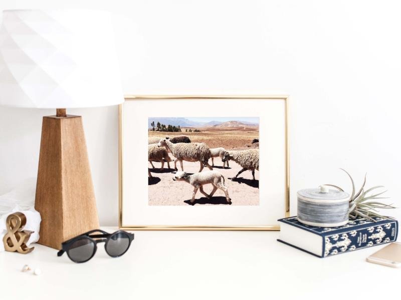 Home Decor for Travelers | Nature Photography | Bast + Bruin