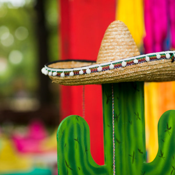 Cactus decoration for Mexican fiesta-Birthday Butler