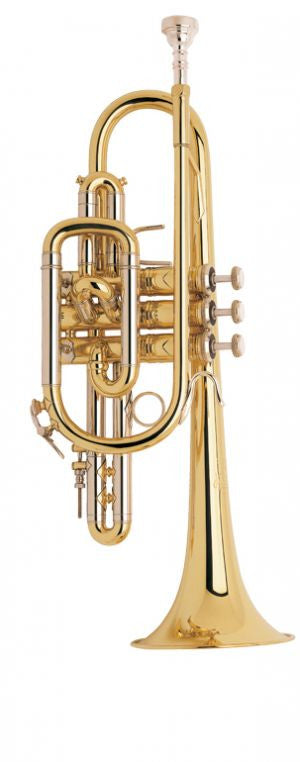 Bach Professional	Stradivarius Model 181ML Cornet