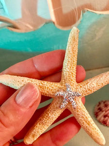 Starfish Resin Ornament