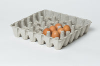 6x6  Pulp Egg Trays w/ FREE SHIPPING