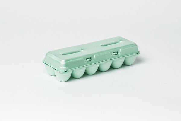 12 CT FOAM EGG CARTON w/ FREE SHIPPING* eggs not included