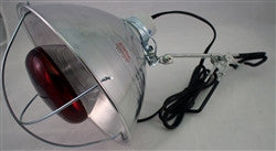 Brooder Light w/ FREE SHIPPING