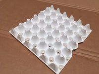 50- 5 x 6 Plastic Egg Trays- USED *Eggs not included