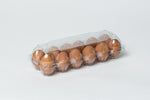 12 Egg Clear Plastic Egg Cartons w/ FREE SHIPPING*