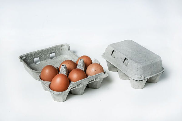 2 x 6 Pillo Pulp Split 6 Egg Cartons - (Non Printed) w/ FREE SHIPPING* Does not include Eggs