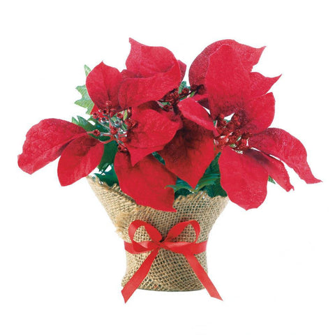 Small Everlasting Burlap Poinsettia