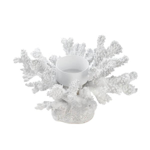 White Coral Candleholder