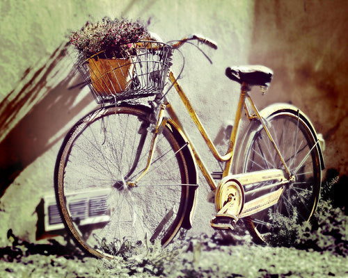 Bicycle Art Print, Beach Cruiser Photo, Bike Canvas Wall Art, Sunny Day