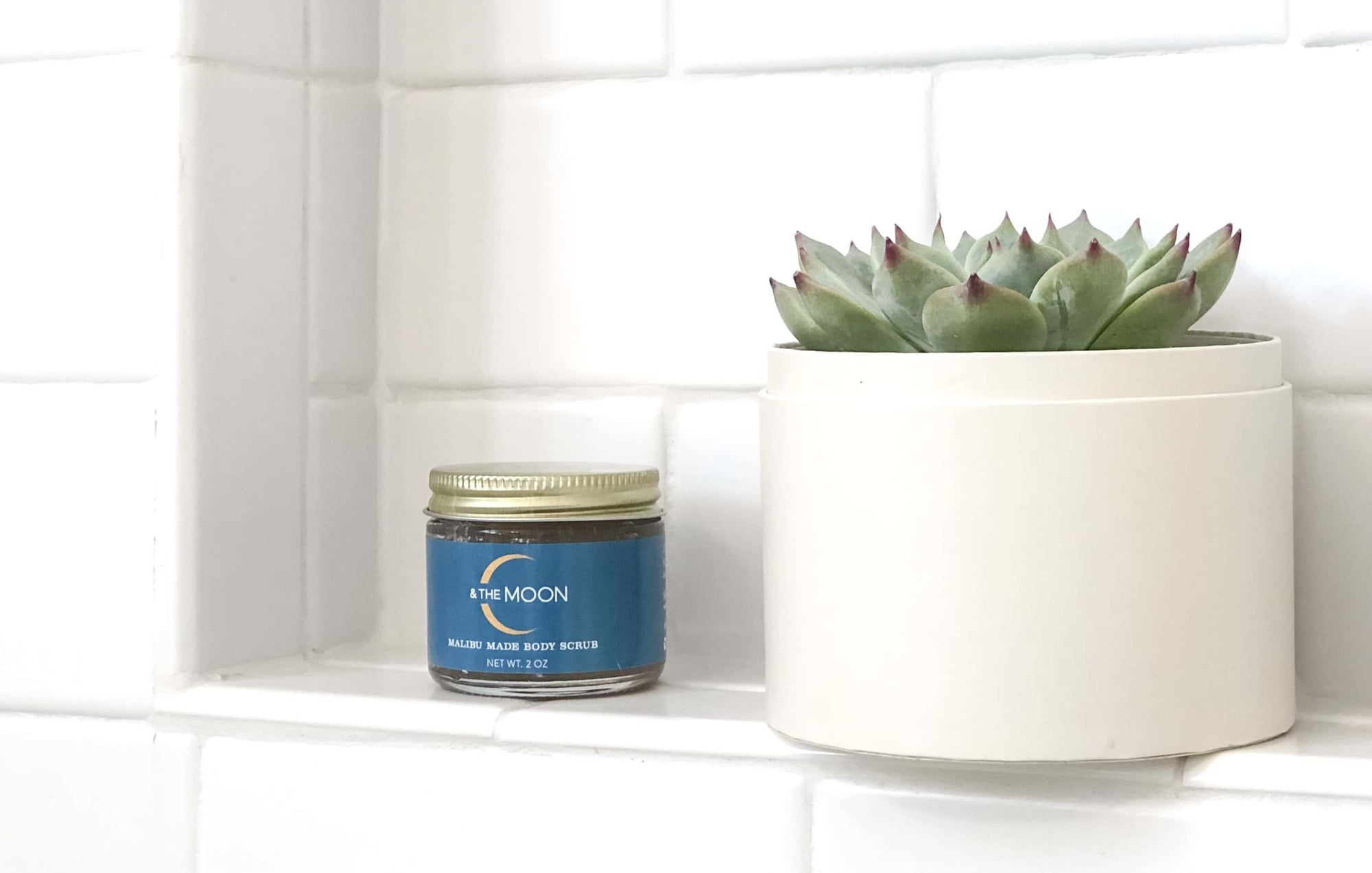C And The Moon body scrub sitting on a shower shelf next to a succulent.