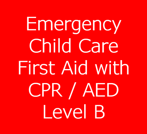 Emergency Child Care First Aid with CPR/AED Level B