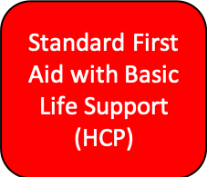 Standard First Aid Course with BLS (Basic Life Support)