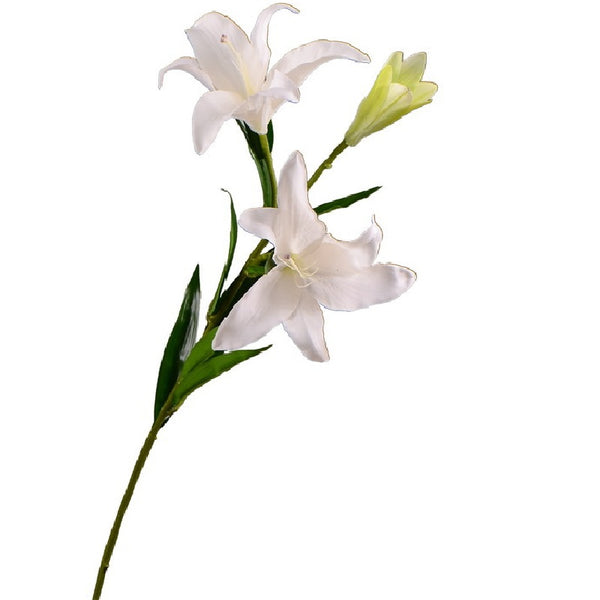 "Lily - 34"" - White"