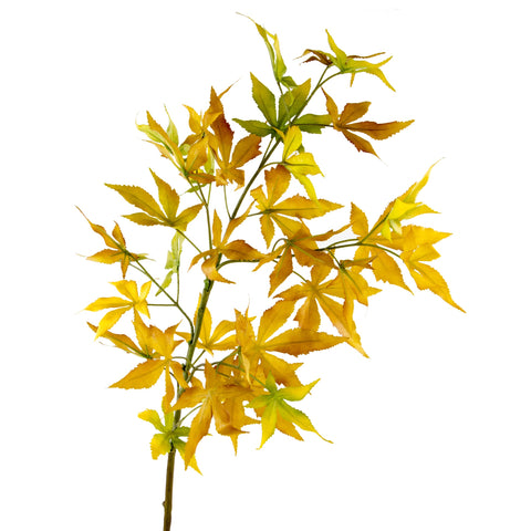 "Maple Leaves - 37"" - Yellow"