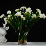 "Narcissus - 15"" - White"