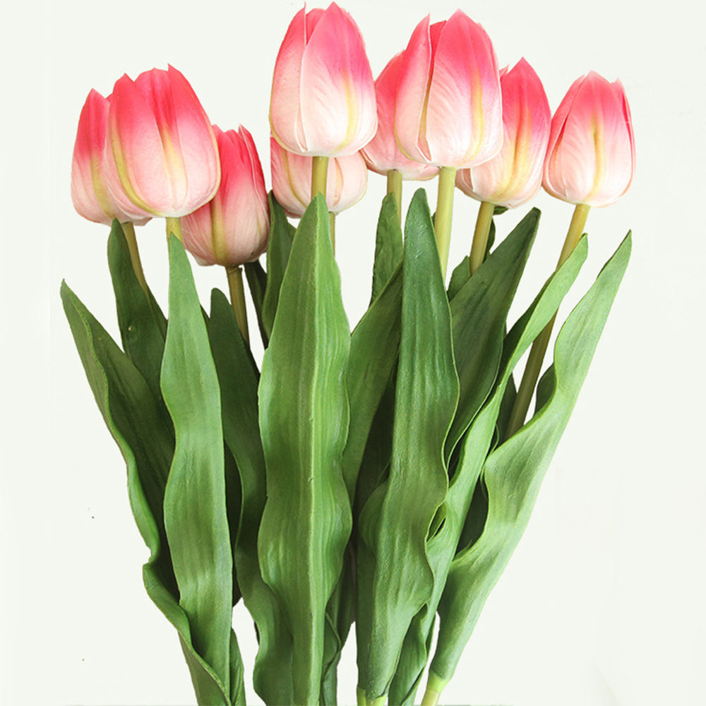 Tulips 10Pcs White & Pink-tipped - 17.9""