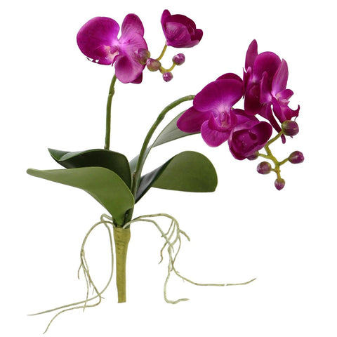"Orchid with Leaves - 17"" - Purple"