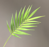 Palm Leaves - 32""