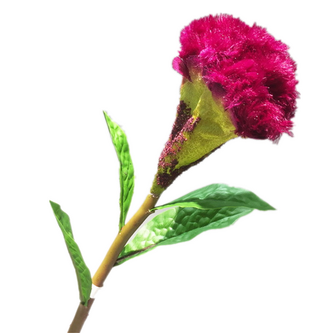 "Cockscomb Flower - 22"" - Fuchsia"