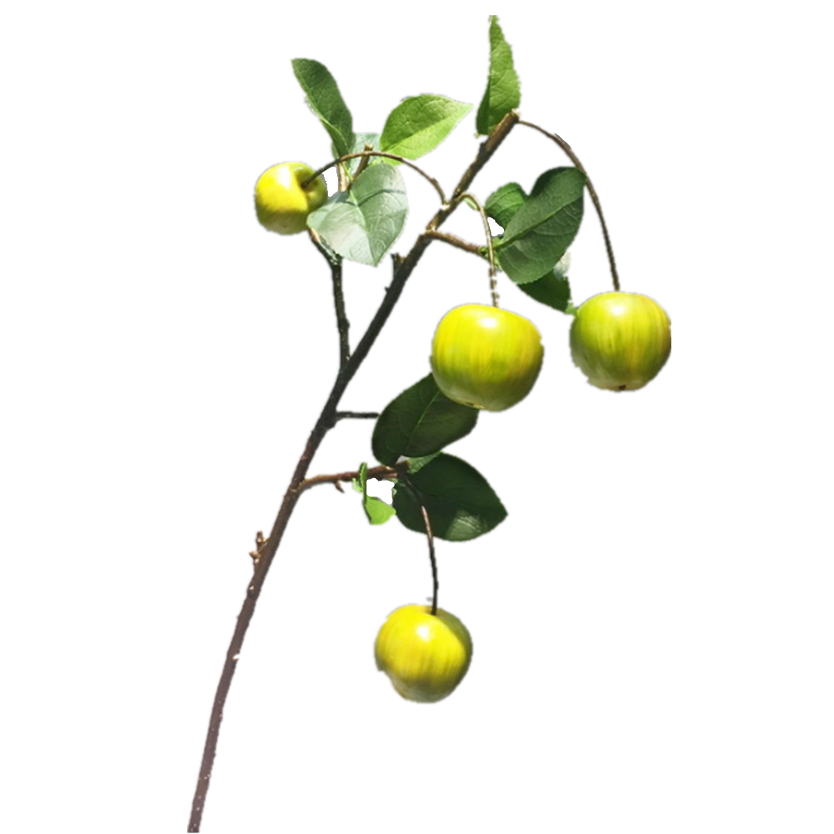 Apple Branch Yellow Green - 29""