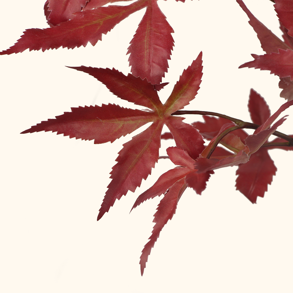 Japanese Maple Leaves Flame - 27""