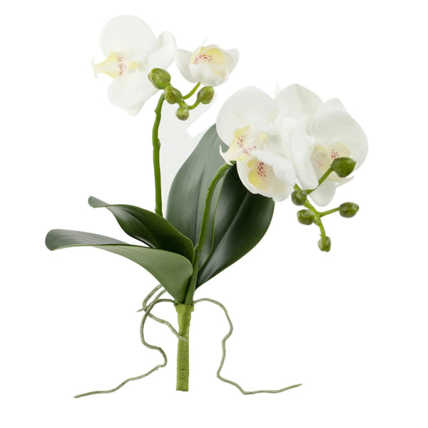 "Orchid with Leaves - 17"" - White"
