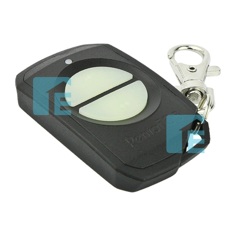 Elsema Pentafob 2 Button Black Remote FOB43302B
