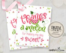 Watermelon Thank You Favor Tag - Baby Shower Thanks A Melon Tags - Pink Watermelon Birthday Thank You Favors - INSTANT DOWNLOAD