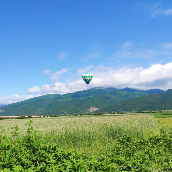 Hot Air Balloon flight over the Belogradchik fortress and an electric wheels tour.