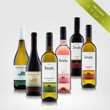 SPECIAL WINE SELECTION - SPECIALLY FOR YOU. DELIVERY TO YOUR HOME