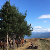 Horse riding and picnic in Rila - galloping to happiness. Rancho Rila.