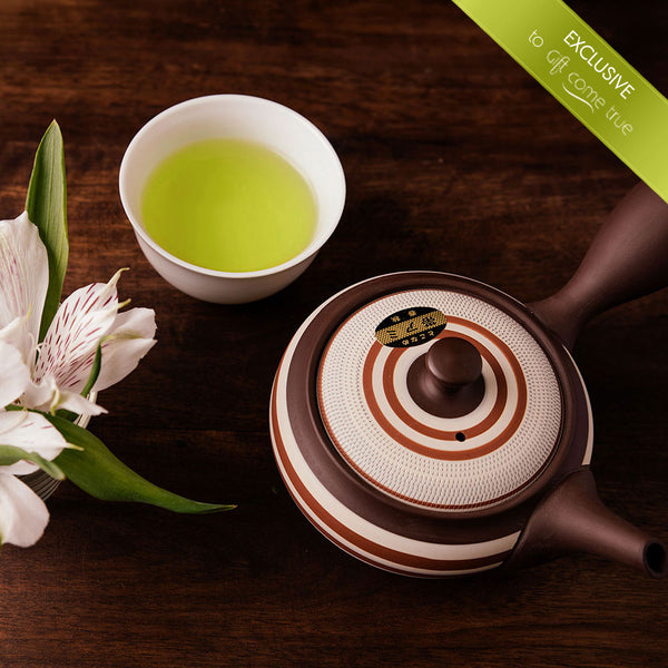 Japanese tea tasting - 12 centuries of traditions, health and different flavors