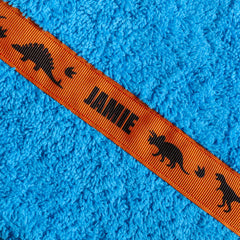 Turquoise hooded towel with personalised Dinosaurs trim - Jamie