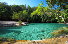 Half Day Jungle Expedition from Krabi (Hot Springs, Emerald Pool, Lunch)