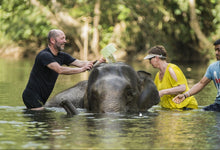 Full Day Khao Lak Discovery With Elephant Bathing From Phuket