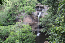 Full Day KHAO YAI NATIONAL PARK (NEW PROGRAM).
