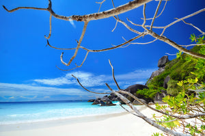 Full Day SIMILAN ISLAND by Private Speedboat from Phuket.