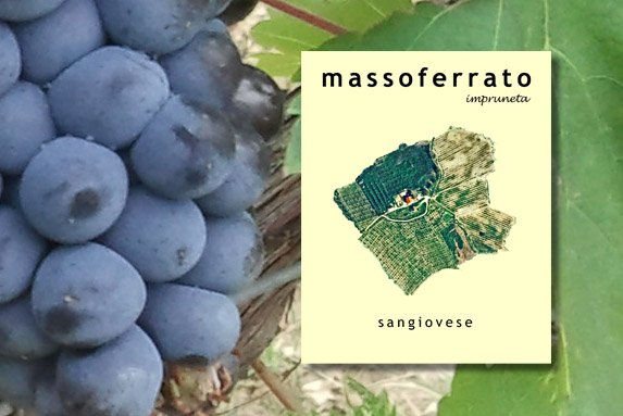 Massoferrato Sangiovese 2015 750mL