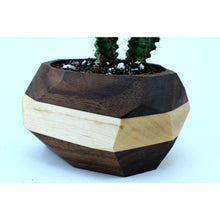 Load image into Gallery viewer, Walnut and Maple Planter - spa-noir