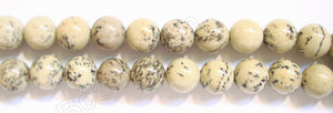 Tree Spot Stone -  12mm Smooth Round Beads  16""