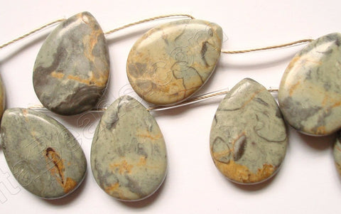 Chinese Picasso Jasper w/ Brown  -  Smooth Flat Briolette  16""