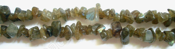 "Labradorite (Dark)  -  Chips 36""    8 - 10 mm"