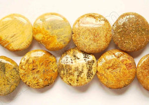 Yellow Fossil Coral  -  Puff Coins 16""